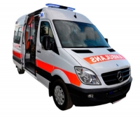 Intensive care ambulance / transport / van / type A